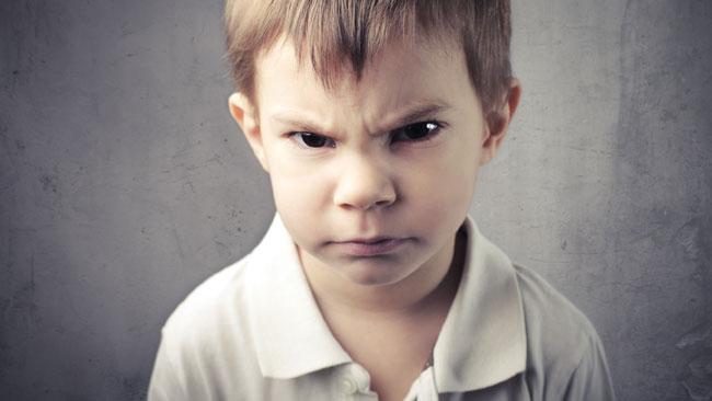 Dossier L'agressivité Article 1 : «J'existe donc je suis agressif»